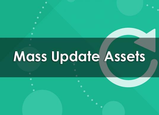 Mass Update Assets